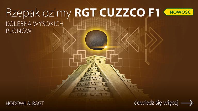 H_019526-CEB-Baner-OC-www-rzepaki-RGT-Cuzzco-F1
