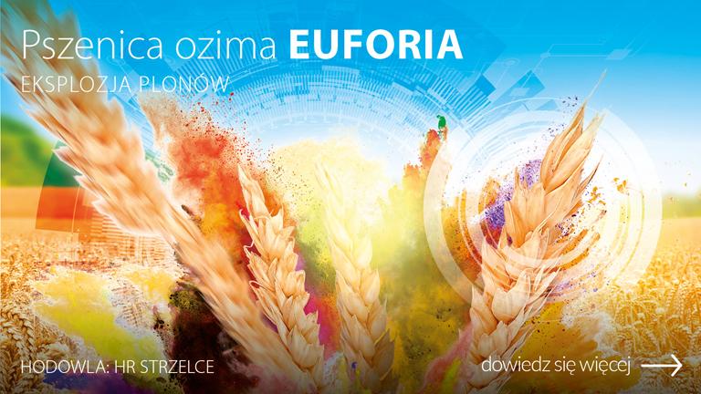 H_019526-CEB-Baner-OC-www-pszenica-ozima-EUFORIA