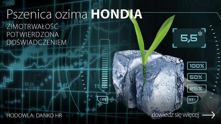 H_019526-CEB-Baner-OC-www-pszenica-ozima-HONDIA